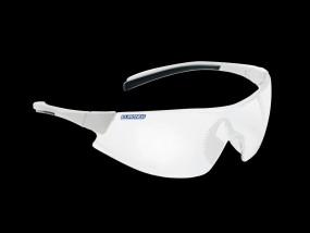 Monoart Schutzbrille Evolution